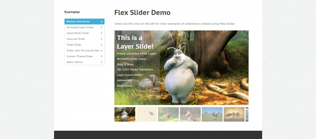 Examples_Meta_Slider_-_Respons2014-10-06_23-22-53